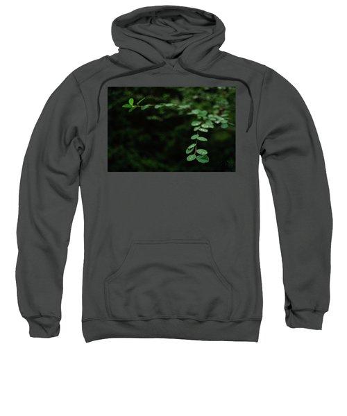 Outreaching Sweatshirt