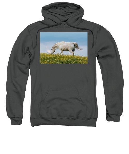 White Horse Of Cataloochee Ranch 2 - May 30 2017 Sweatshirt