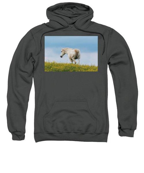 White Horse Of Cataloochee Ranch - May 30 2017 Sweatshirt