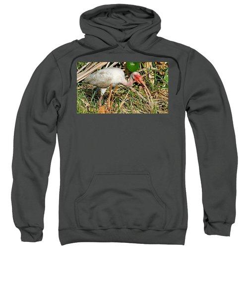 White Ibis With Crayfish Sweatshirt