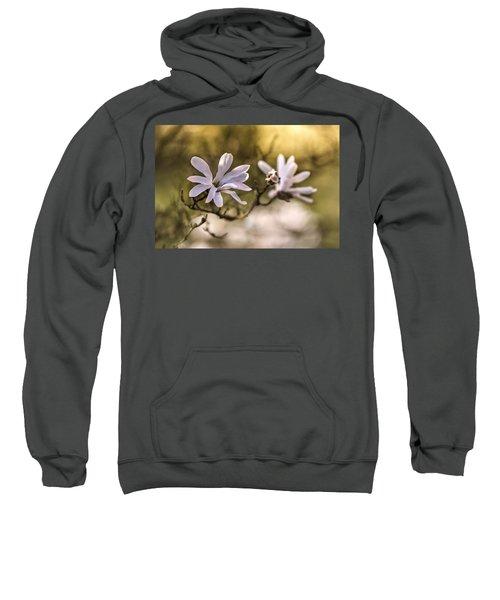 White Magnolia Sweatshirt