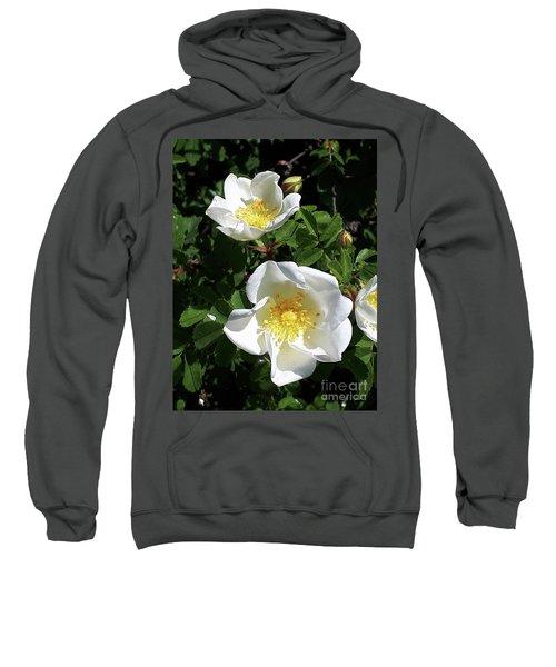 White Perfection Sweatshirt