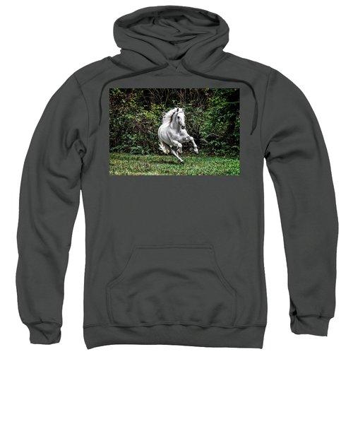 White Stallion Sweatshirt