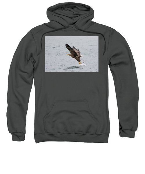 White-tailed Eagle Catching Dinner Sweatshirt