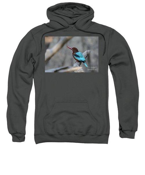 White-throated Kingfisher 02 Sweatshirt