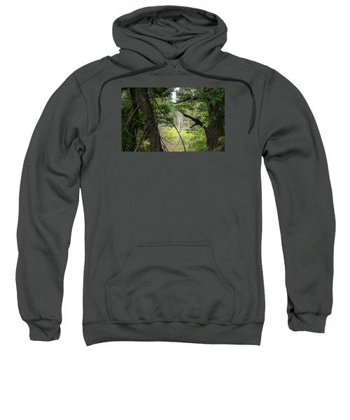 White Tree In Magic Forest Sweatshirt