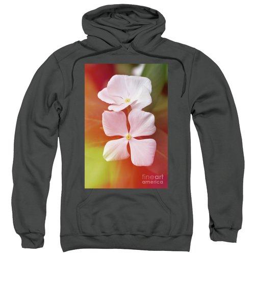 White Vinca With Vivid Highligts  Sweatshirt