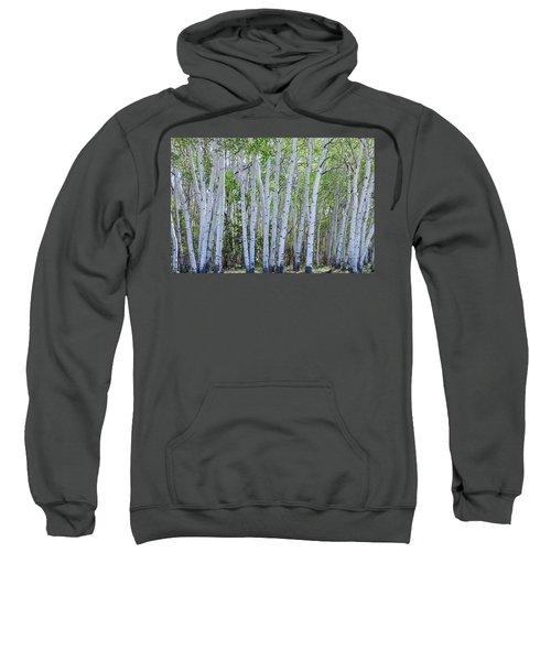 White Wilderness Sweatshirt by James BO Insogna