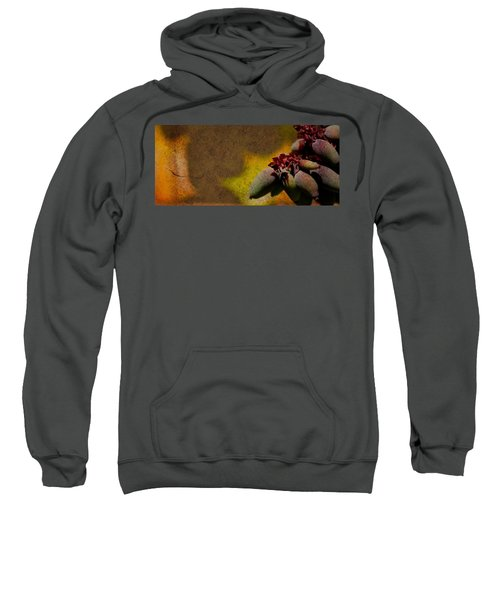 Who Knows Sweatshirt
