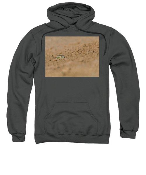 Whozat Sweatshirt