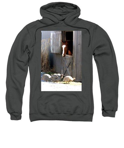 Why Did The Guinea Hen Cross The Road Sweatshirt