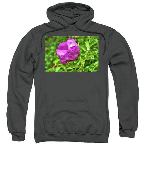 Wild Alaskan Rose Sweatshirt