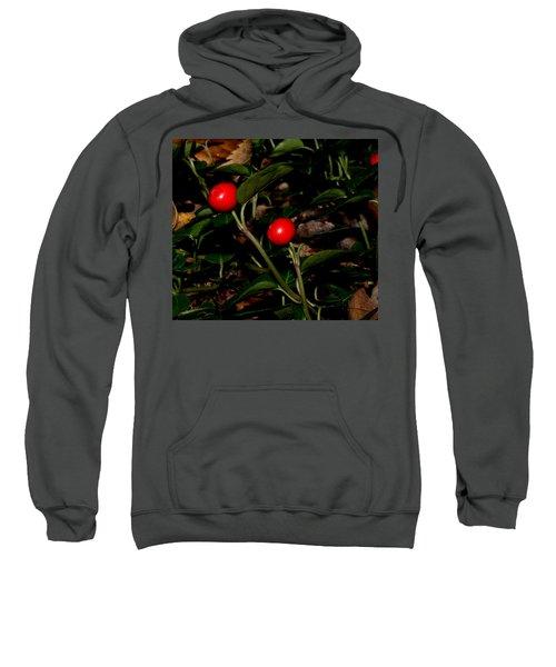 Wild Berries Sweatshirt