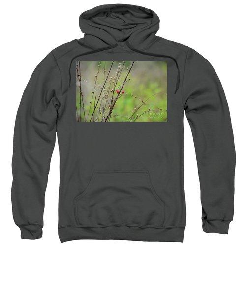 Wild Berry Duo - Georgia Sweatshirt