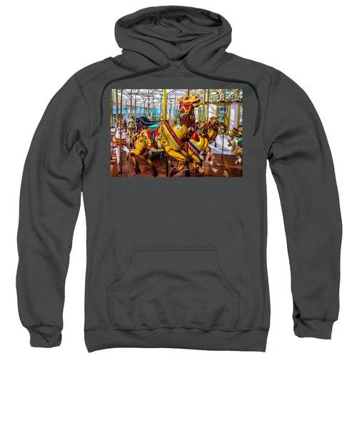 Wild Camel Carrousel Ride Sweatshirt