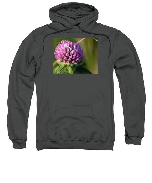 Wild Flower Bloom  Sweatshirt
