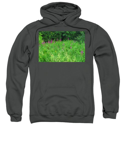 Wild Flowers And Shrubs In Vogelsberg Sweatshirt