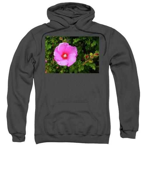 Wild Glory Sweatshirt
