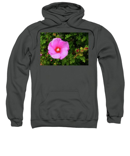 Wild Glory Sweatshirt