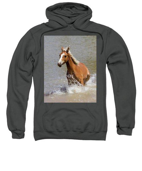Wild Horse Splashing At The Water Hole Sweatshirt