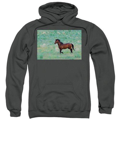 Wild Horse Trotting Sweatshirt