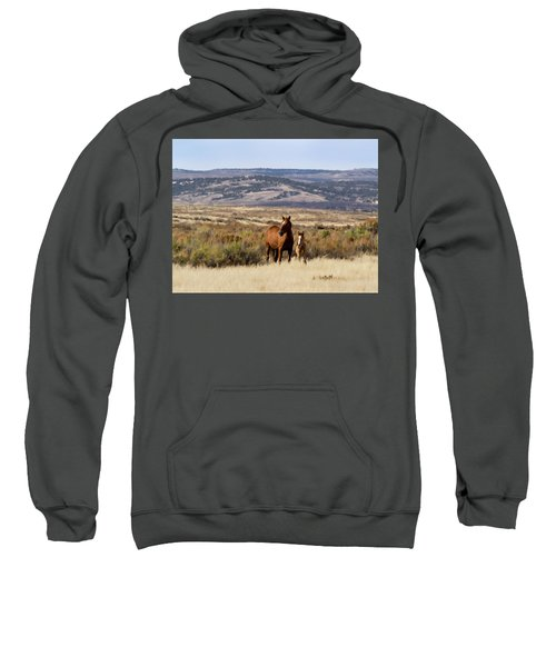 Wild Mare With Young Foal In Sand Wash Basin Sweatshirt