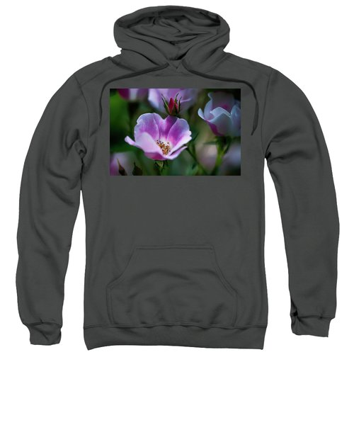 Wild Rose 7 Sweatshirt