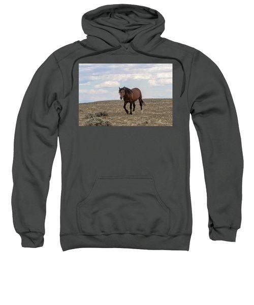 Wild Stallion Sweatshirt