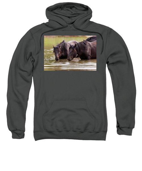 Wild Stallions At The Water Hole Sweatshirt