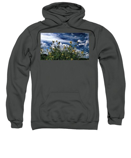 Wildflowers On The Brazos Sweatshirt