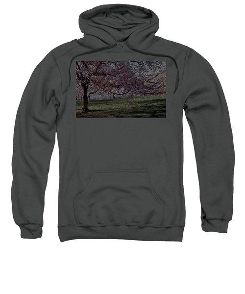 Wildflowers Party Sweatshirt