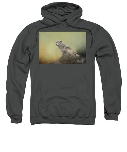 Wildlife Alaska Sweatshirt
