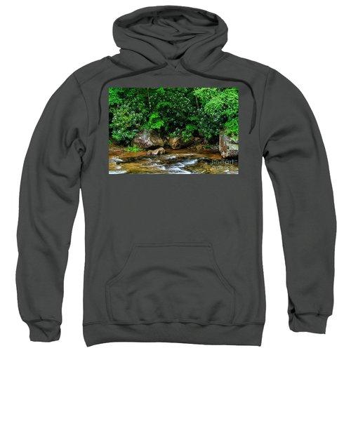 Williams River And Rhododdendron Sweatshirt