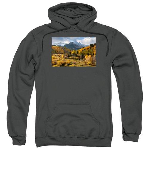 Willow Swamp Sweatshirt