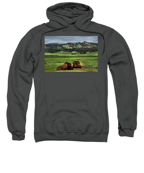 Wind Cave Bison Sweatshirt