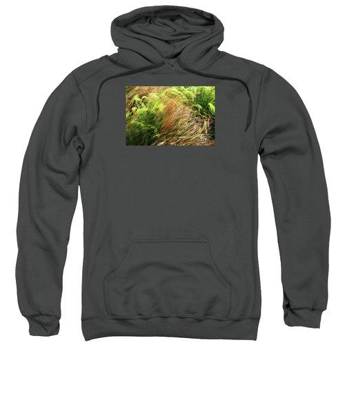 Windblown Grasses Sweatshirt