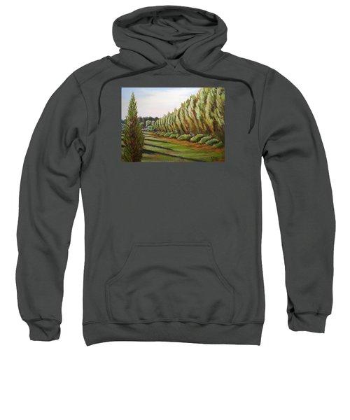 Windbreak Evening Sweatshirt