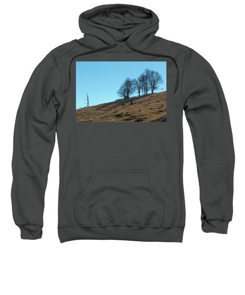 Windswept Trees - December 7 2016 Sweatshirt