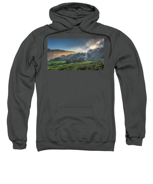 Windswept Trees On The Oregon Coast Sweatshirt