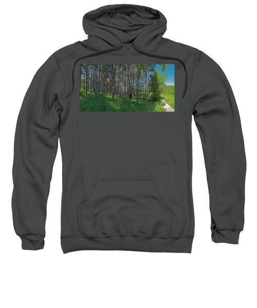 Wingate Prairie Veteran Acres Park Pines Crystal Lake Il Sweatshirt