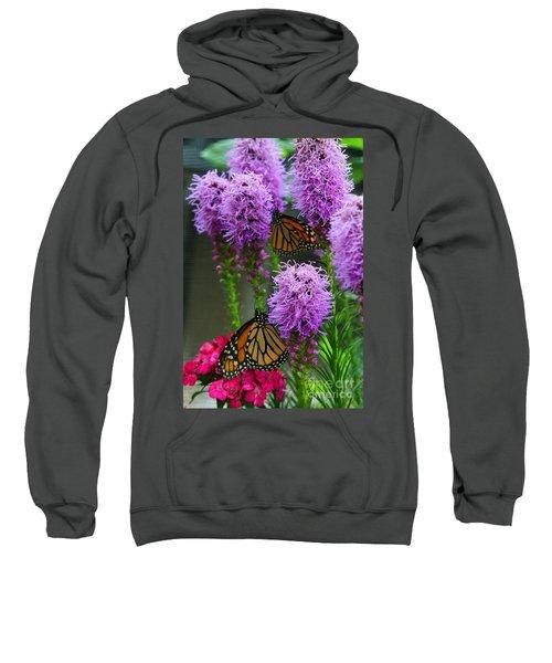 Winged Beauties Sweatshirt