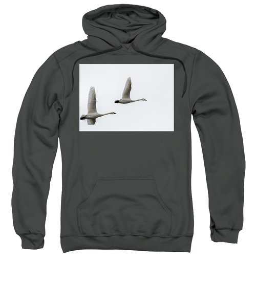 Winging Home Sweatshirt