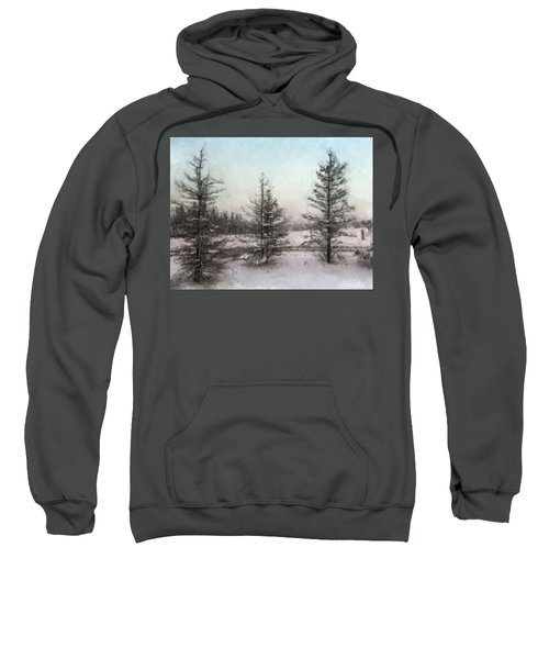 Winter Begins Sweatshirt