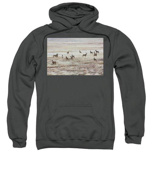 Winter Deer Sweatshirt