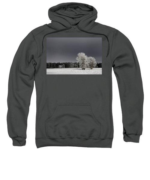 Winter Dreamscape Sweatshirt