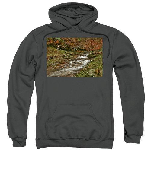 Winter Forest Stream Sweatshirt