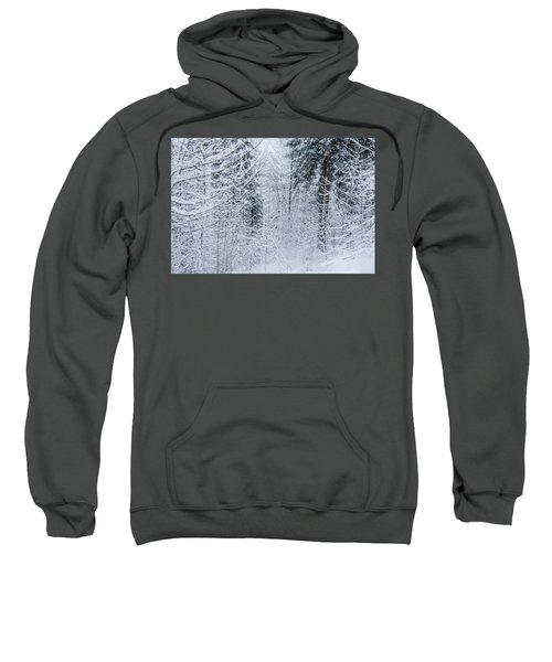 Winter Glow- Sweatshirt