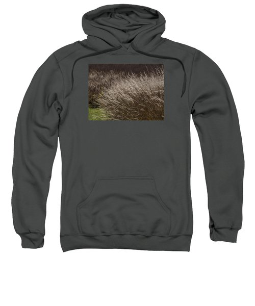 Winter Grass Sweatshirt