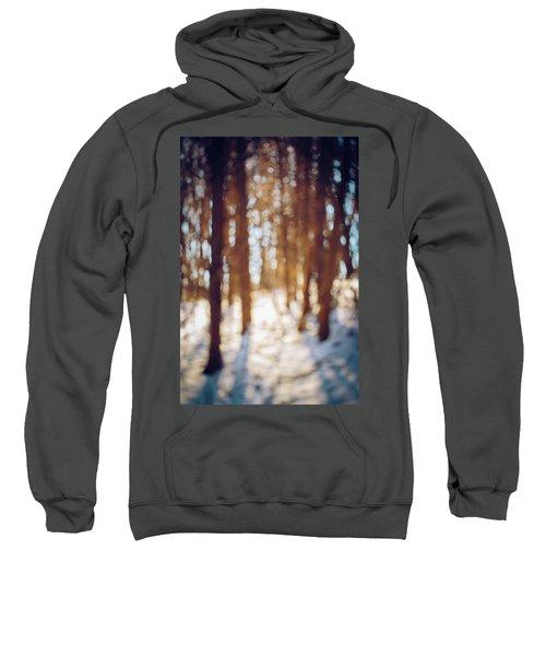 Winter In Snow Sweatshirt