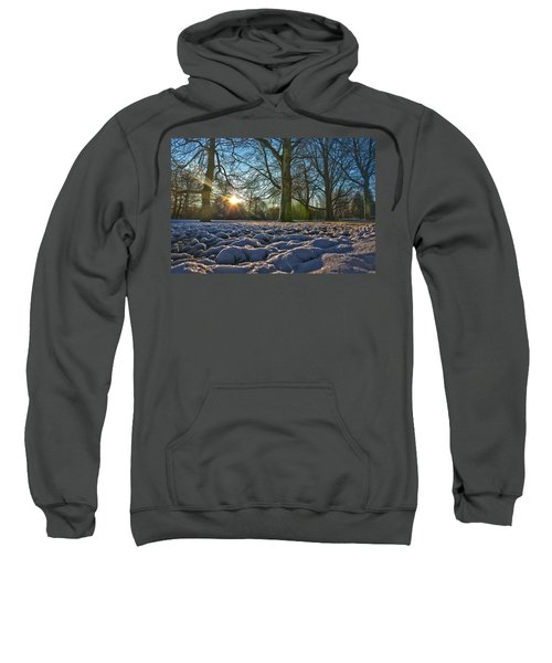 Winter In The Park Sweatshirt